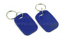 2 in 1 Dual frequency cloning Keyfob Tag (Blue)